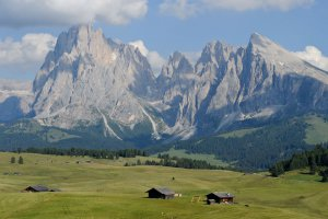 Mountain bike sull'Alpe di Siusi 06