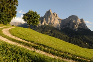 Hiking holidays in South Tyrol 03