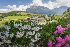 Vacanze escursionistiche in Alto Adige 06